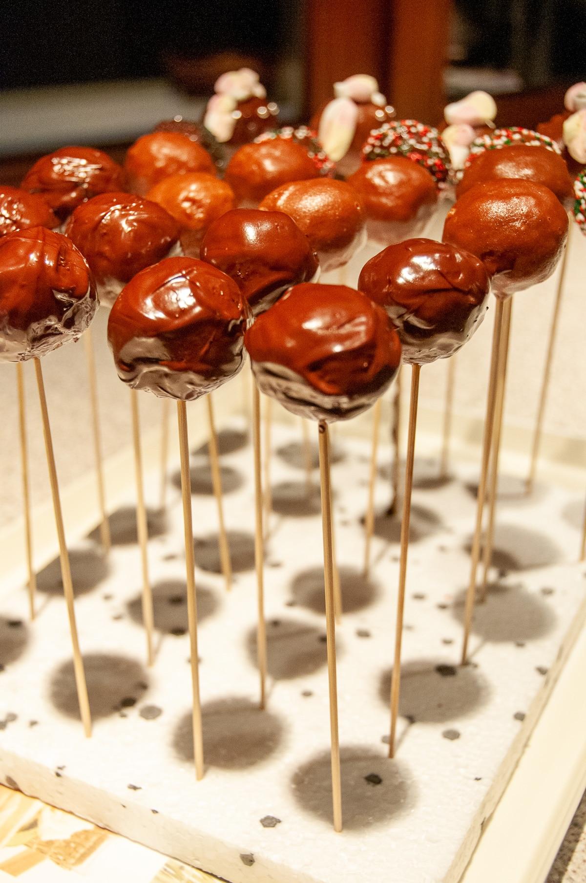 Cake pops na patykach ustawione na podstawce, oblane czekoladą.