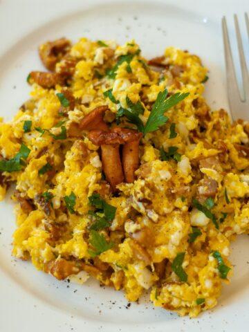 Jajecznica z kurkami na białym talerzu