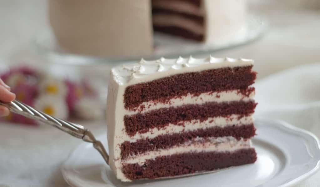 Kawałek tortu z ciemnym biszkoptem i białym kremem