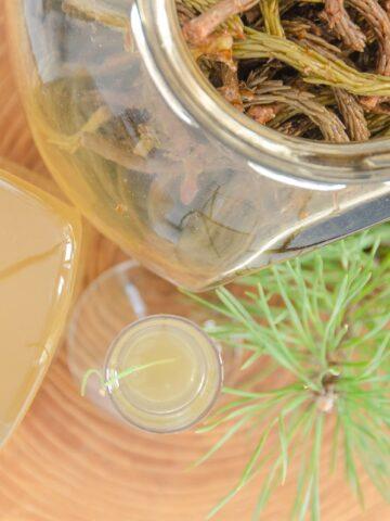 nalewka z pedow sosny z odzysku