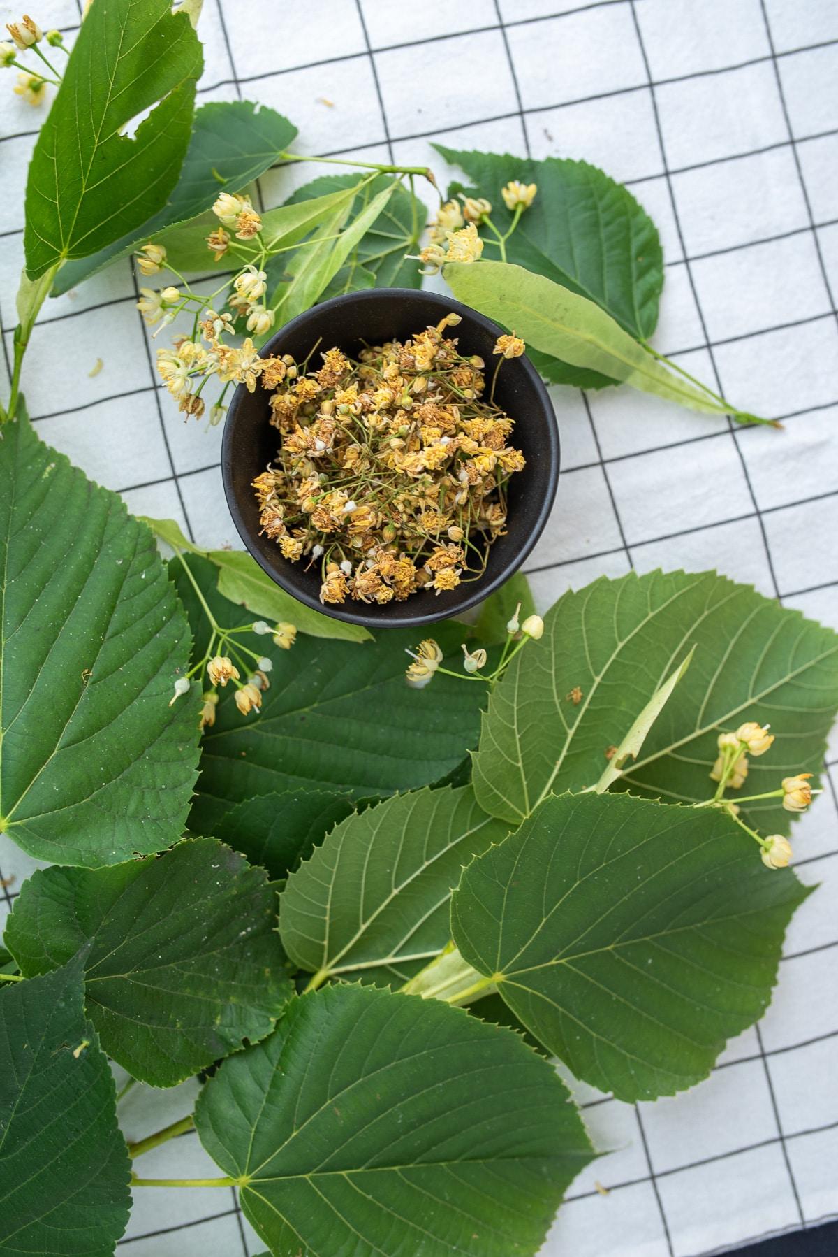 w czarnej miseczce ususzone kwiaty lipy na herbatę